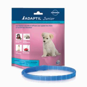 Adaptil Junior - Collier anti-aboiement pour chiots