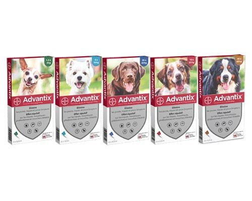 Advantix - Pipettes anti-puces et anti-tiques